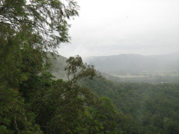 Ausblick in der Nähe der Mapleton Falls